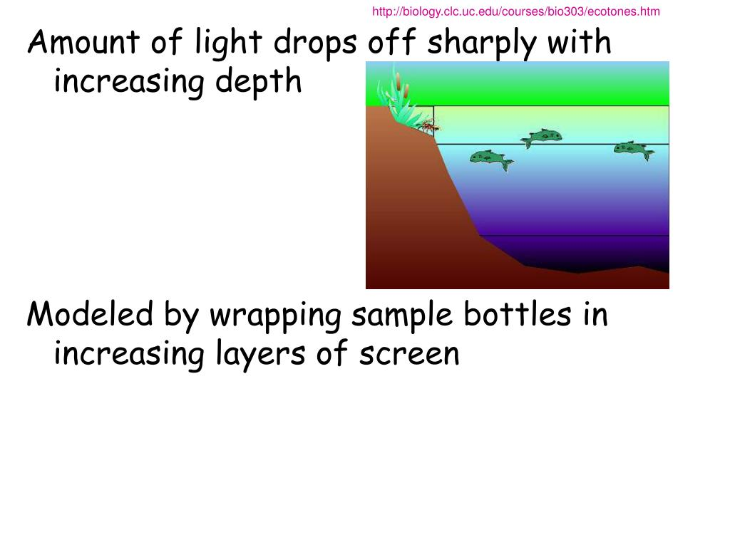ap biology dissolved oxygen essay