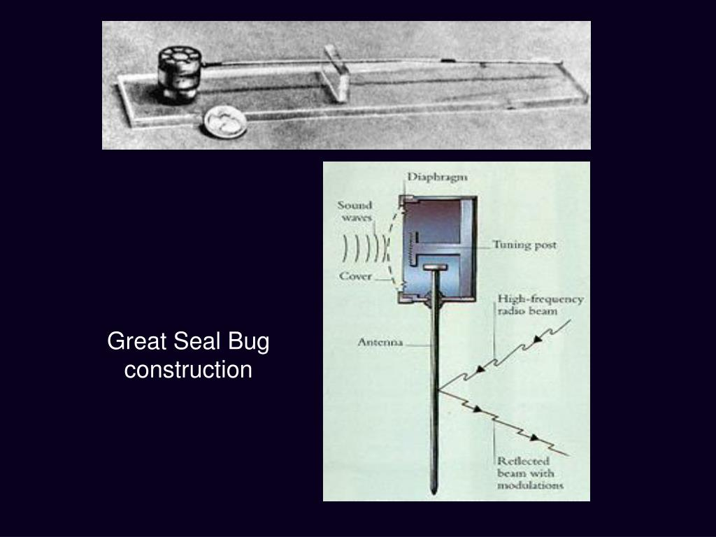 Great Seal Bug construction
