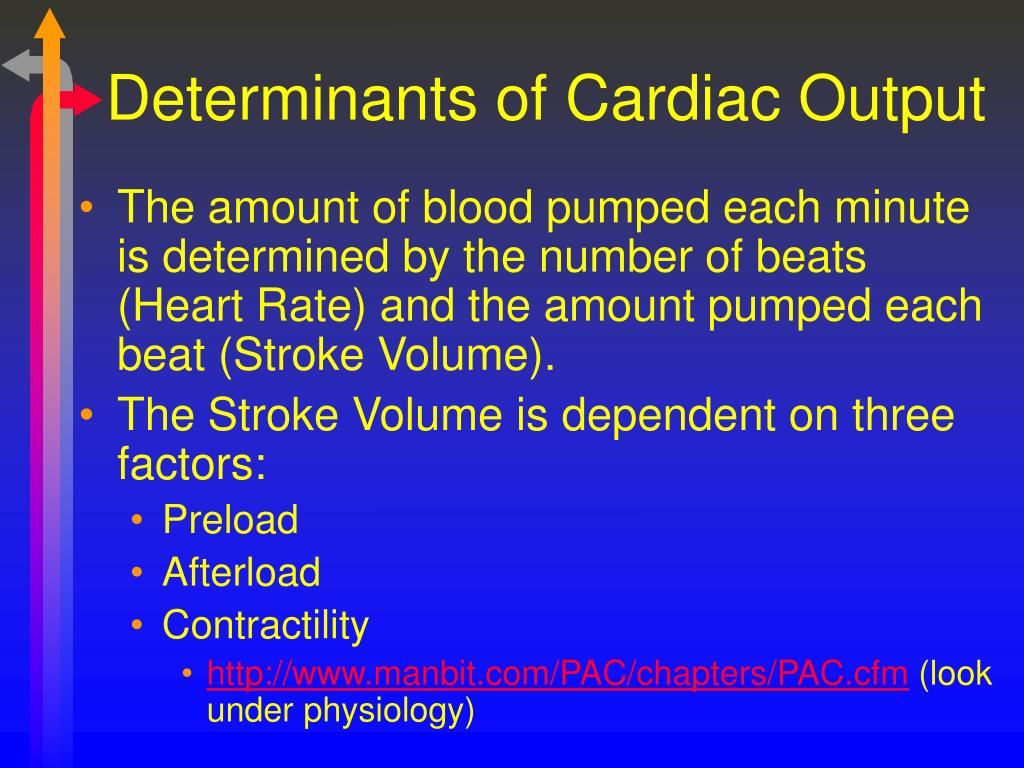 Determinants of Cardiac Output