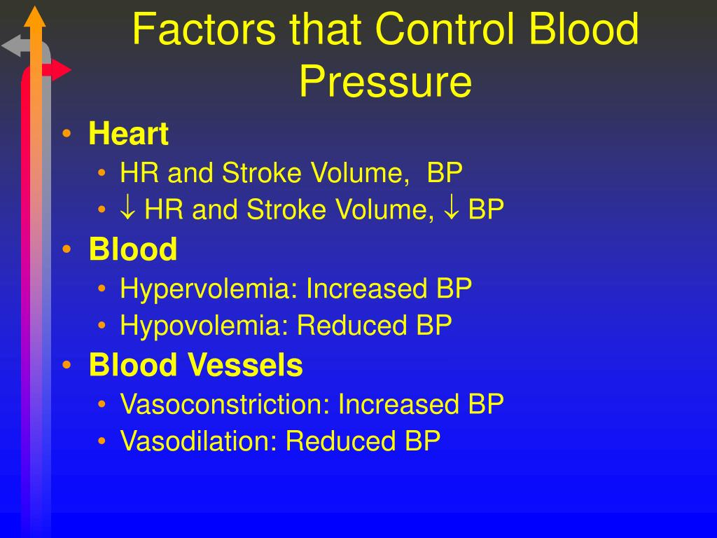 Factors that Control Blood Pressure