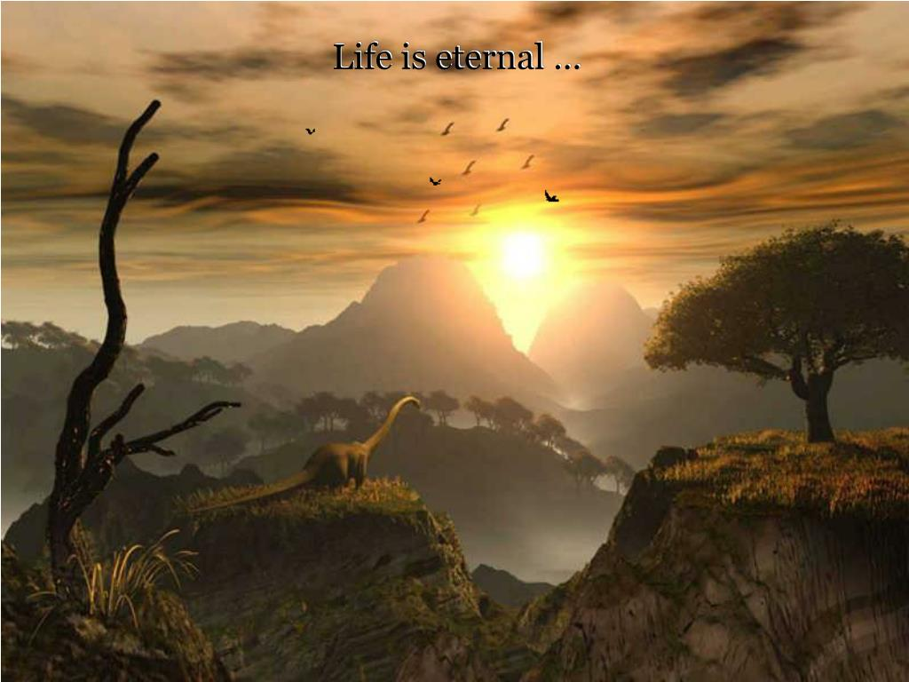 Life is eternal …