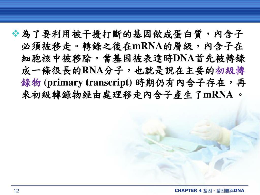 為了要利用被干擾打斷的基因做成蛋白質,內含子必須被移走。轉錄之後在