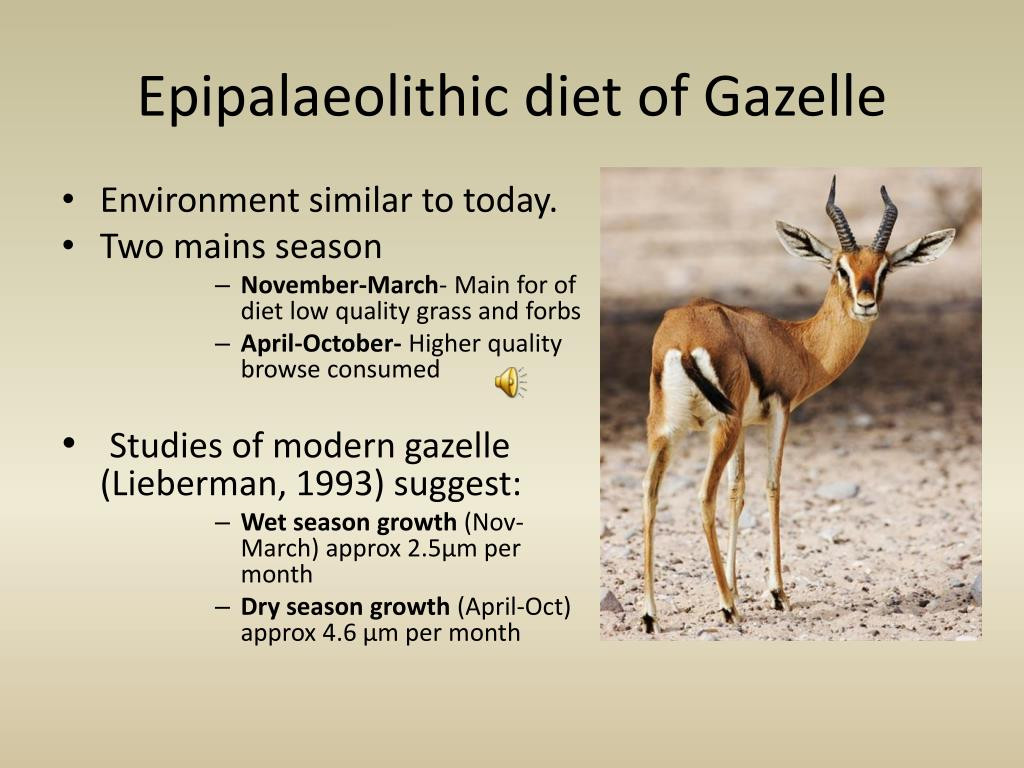 Epipalaeolithic diet of Gazelle