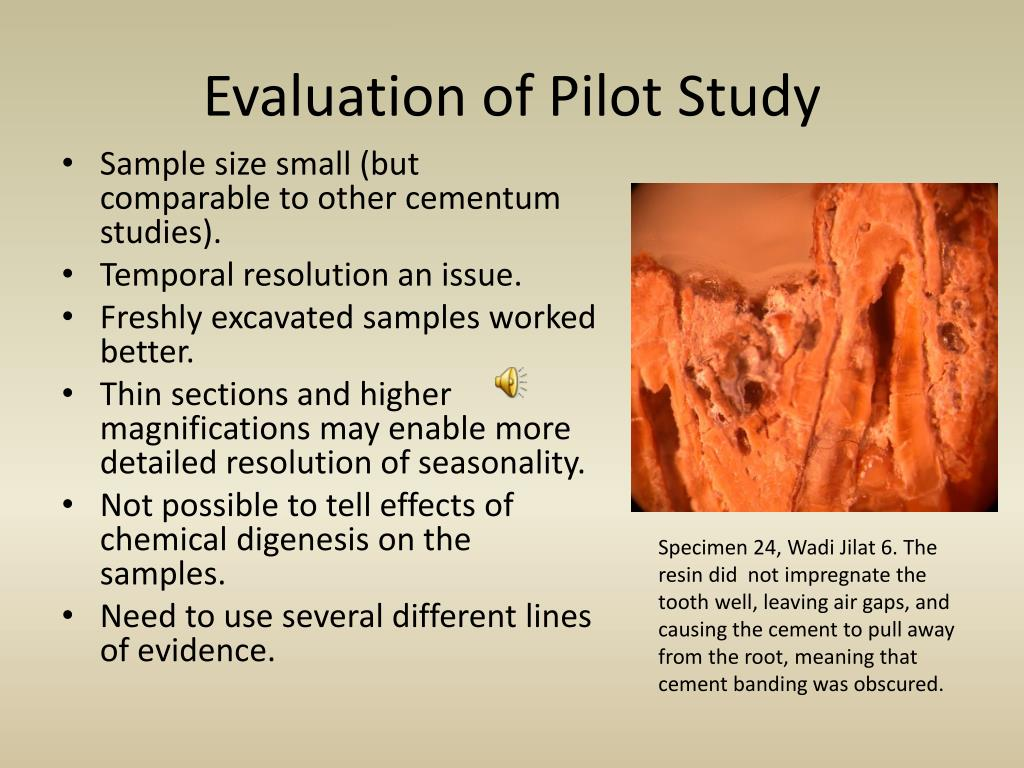 Evaluation of Pilot Study
