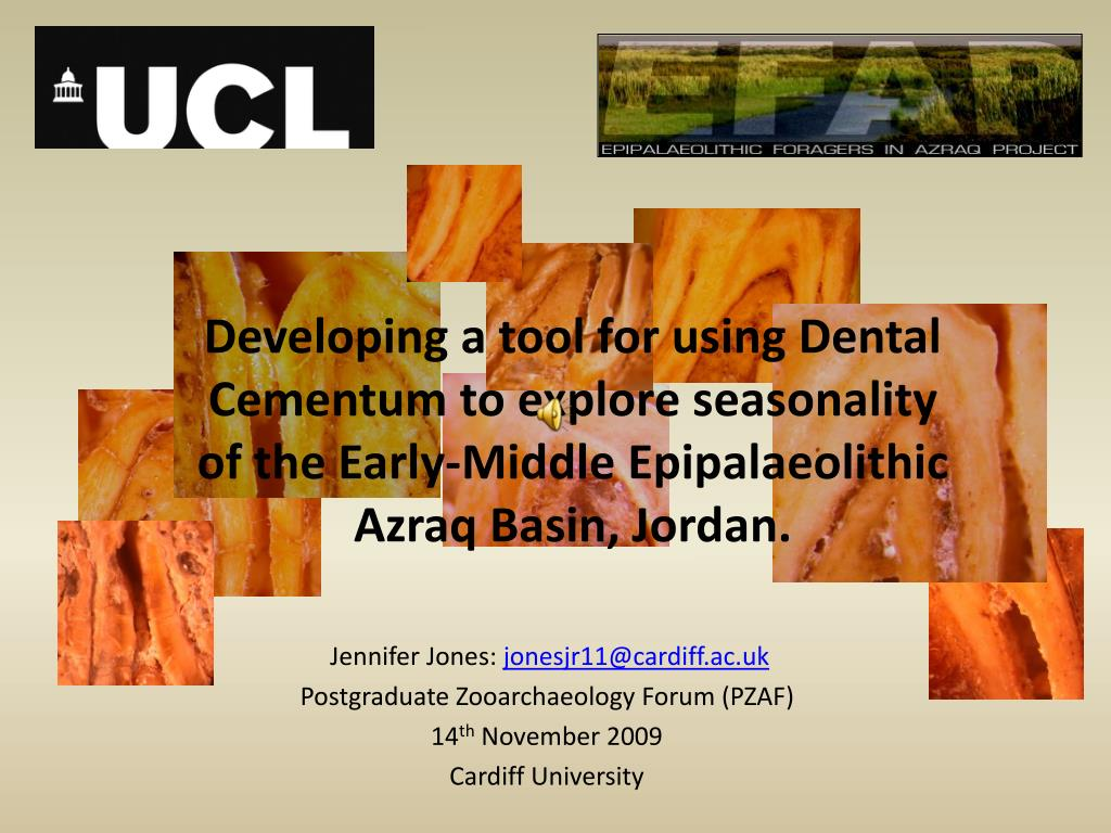Developing a tool for using Dental Cementum to explore seasonality of the Early-Middle Epipalaeolithic Azraq Basin, Jordan.