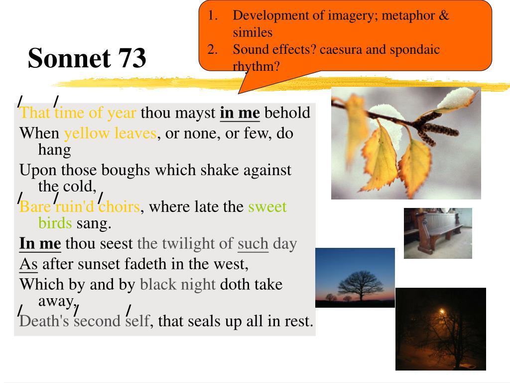 sonnet 73 Technical analysis of sonnet 73 literary devices and the technique of william shakespeare.