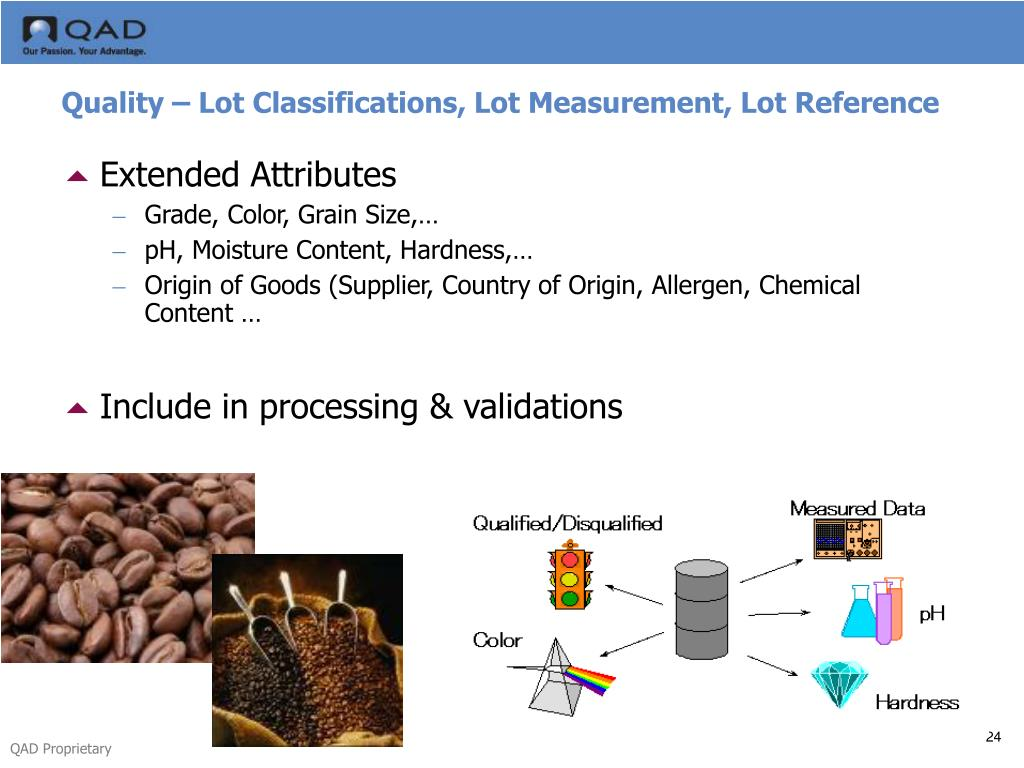 Quality – Lot Classifications, Lot Measurement, Lot Reference