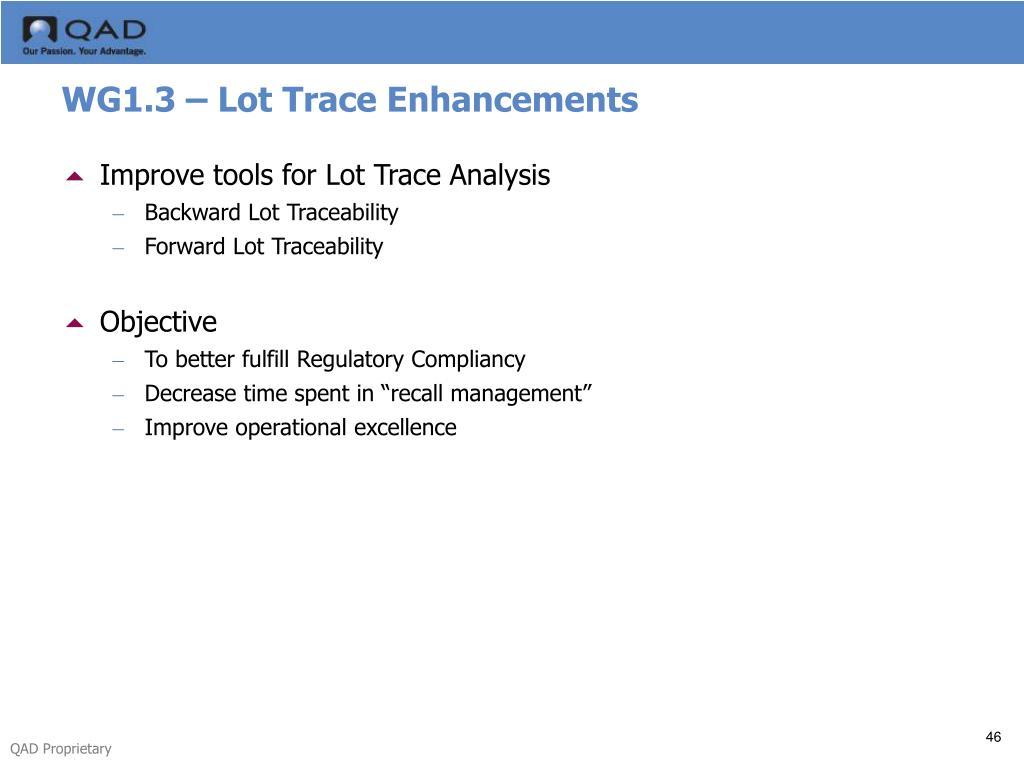 WG1.3 – Lot Trace Enhancements