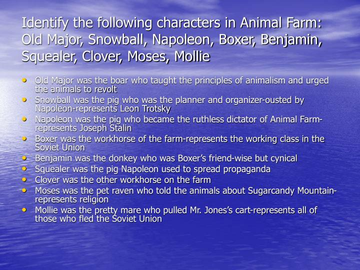Identify the following characters in Animal Farm: Old Major, Snowball, Napoleon, Boxer, Benjamin, Sq...