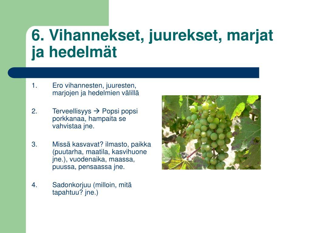 6. Vihannekset, juurekset, marjat ja hedelmät
