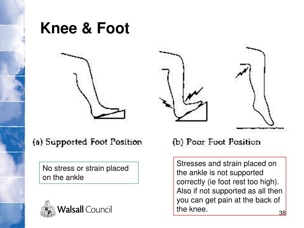 Knee & Foot