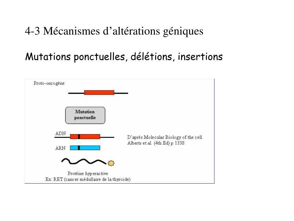 4-3 Mécanismes d'altérations géniques