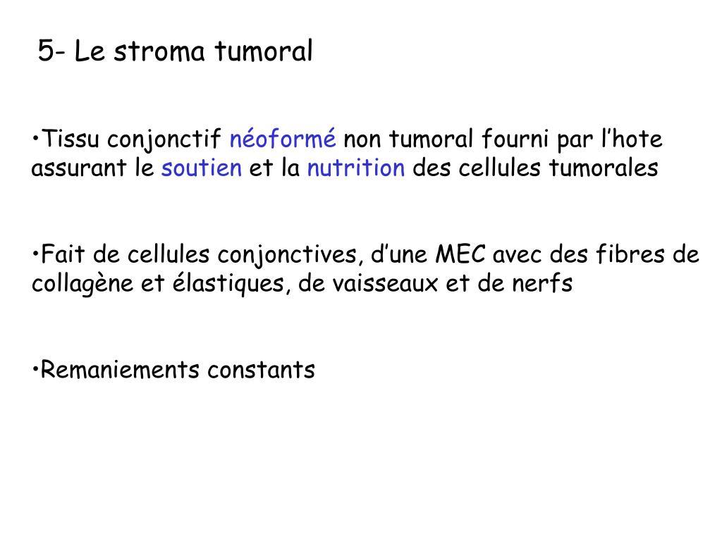 5- Le stroma tumoral