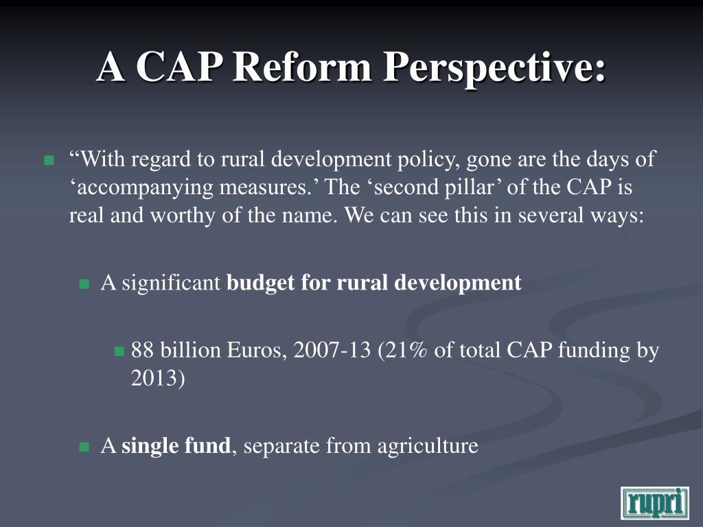 A CAP Reform Perspective: