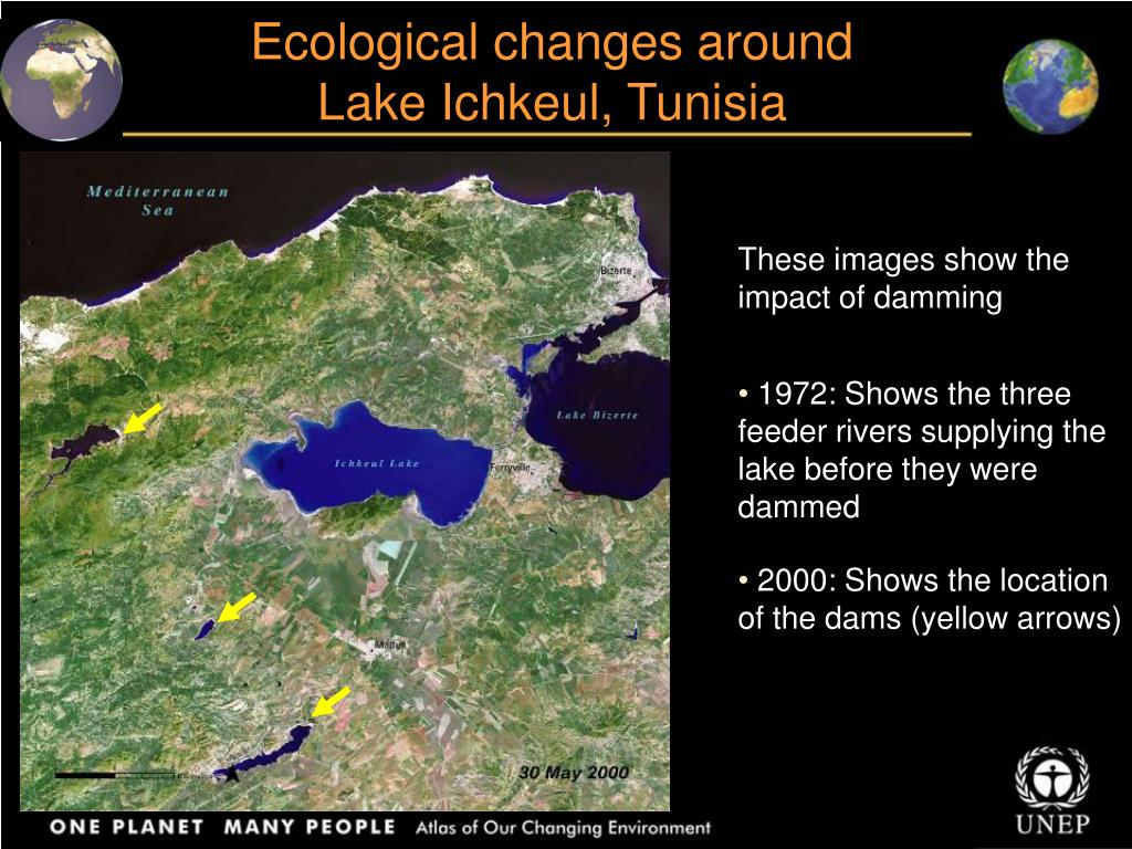 Ecological changes around