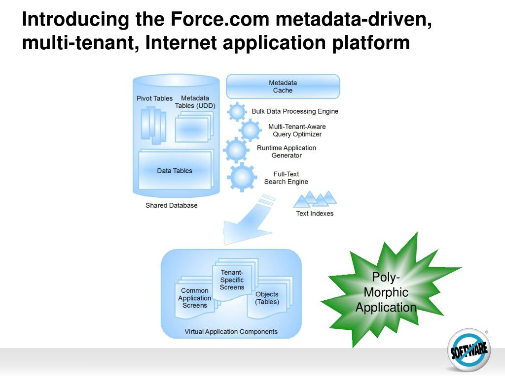 Introducing the Force.com metadata-driven,  multi-tenant, Internet application platform