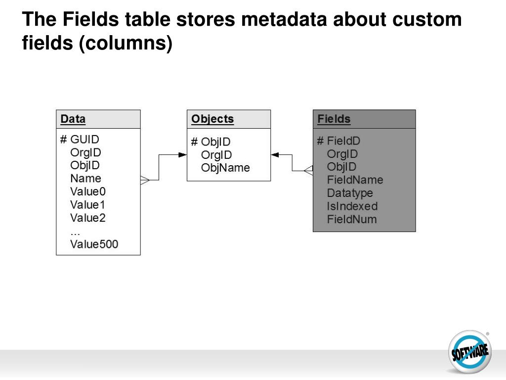 The Fields table stores metadata about custom fields (columns)