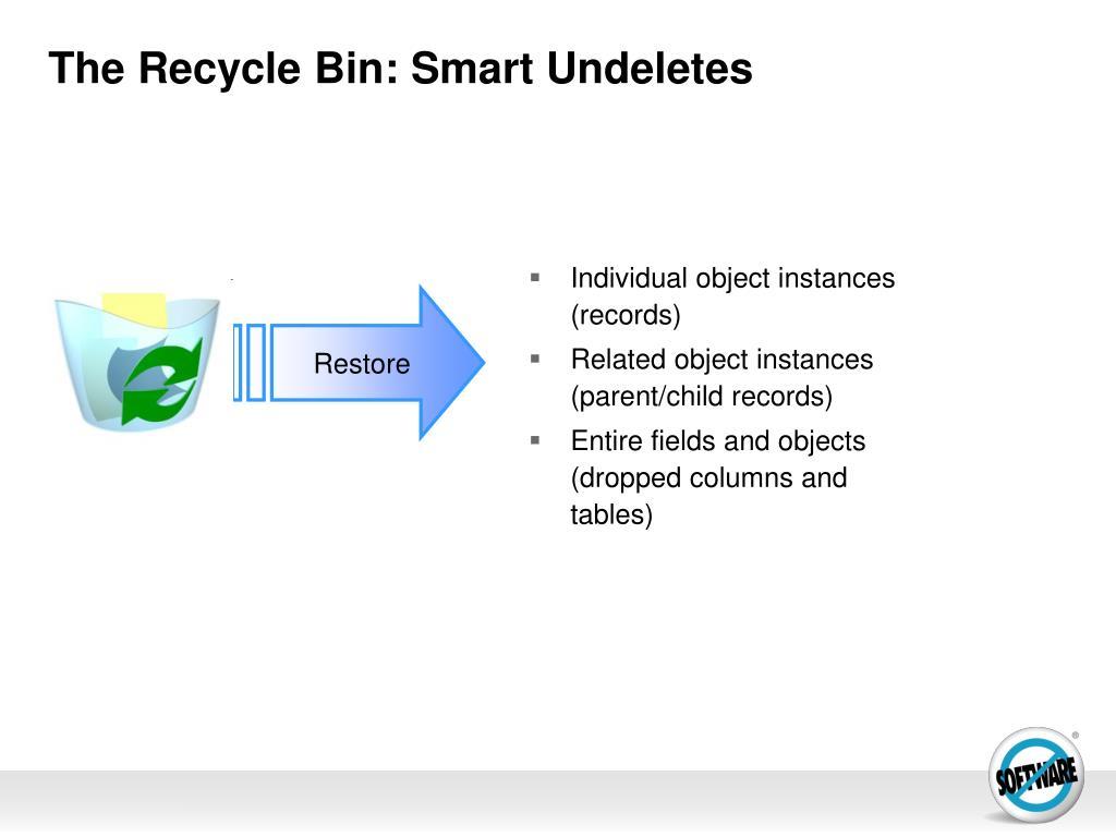 The Recycle Bin: Smart Undeletes