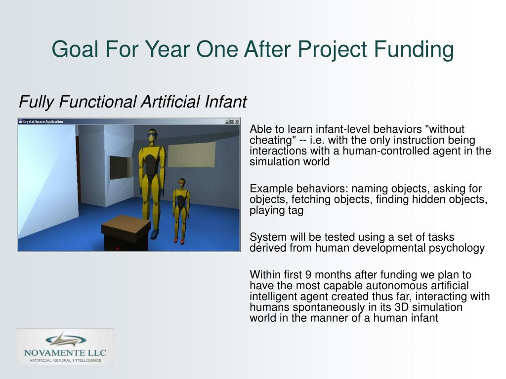 Goal For Year One After Project Funding