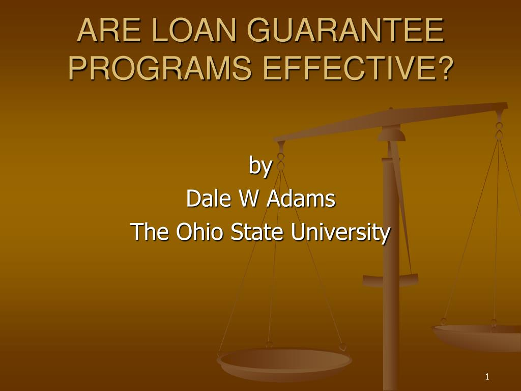 ARE LOAN GUARANTEE PROGRAMS EFFECTIVE?