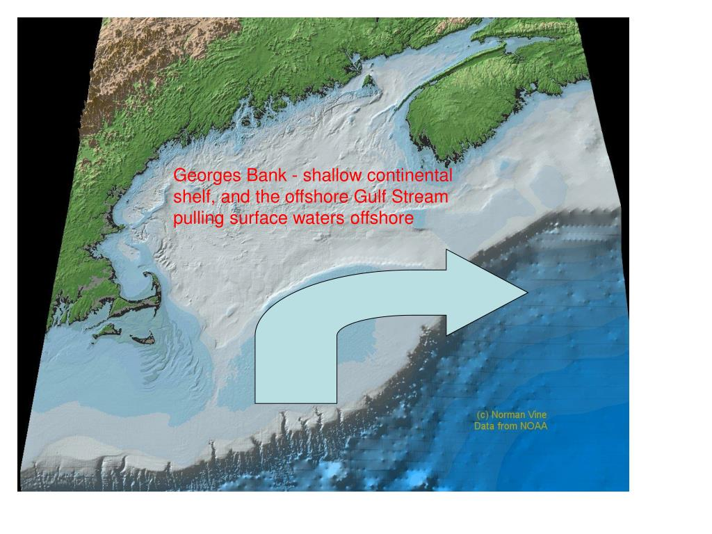 Georges Bank - shallow continental shelf, and the offshore Gulf Stream pulling surface waters offshore