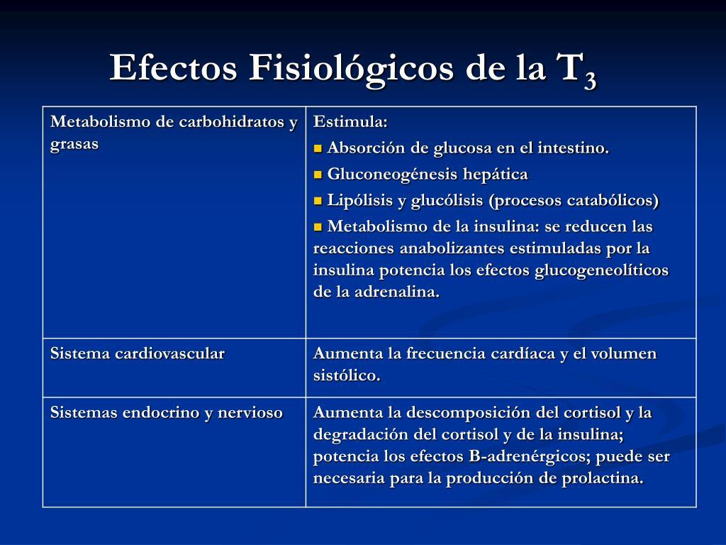 Efectos Fisiológicos de la T