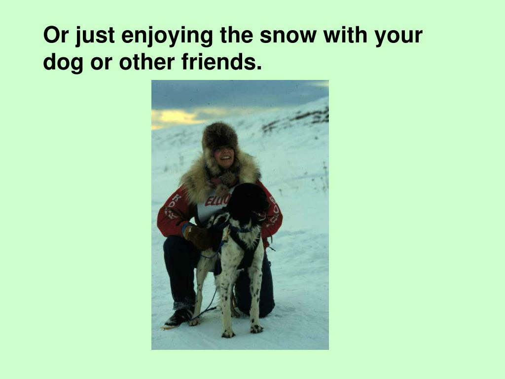 Or just enjoying the snow with your dog or other friends.
