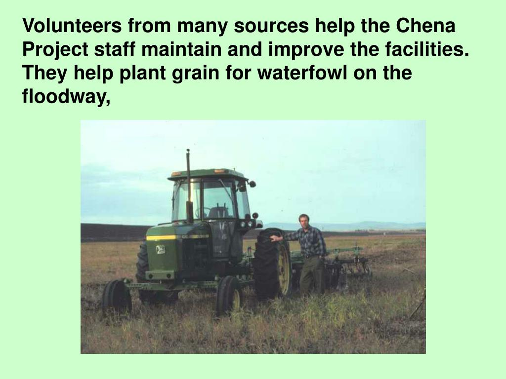 Volunteers from many sources help the Chena Project staff maintain and improve the facilities.  They help plant grain for waterfowl on the floodway,