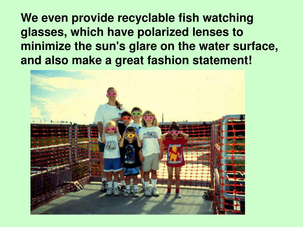 We even provide recyclable fish watching glasses, which have polarized lenses to minimize the sun's glare on the water surface, and also make a great