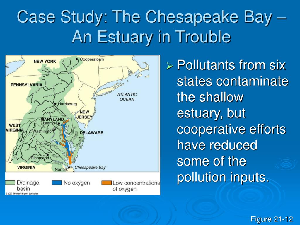 Case Study: The Chesapeake Bay – An Estuary in Trouble