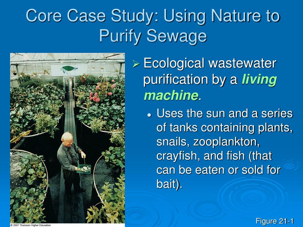 Core Case Study: Using Nature to Purify Sewage