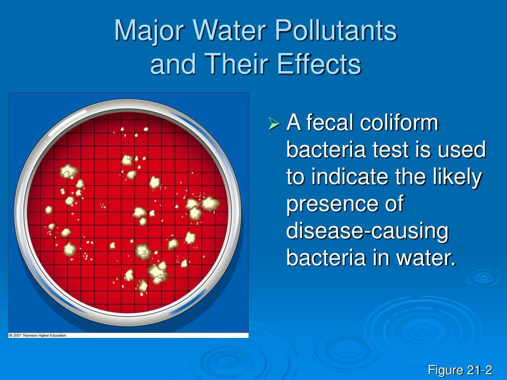 Major Water Pollutants