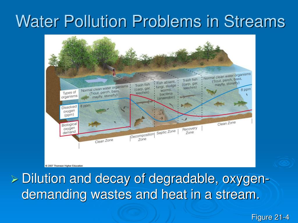 Water Pollution Problems in Streams