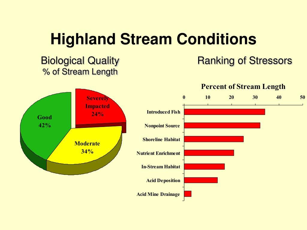 Highland Stream Conditions