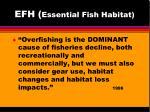 efh essential fish habitat