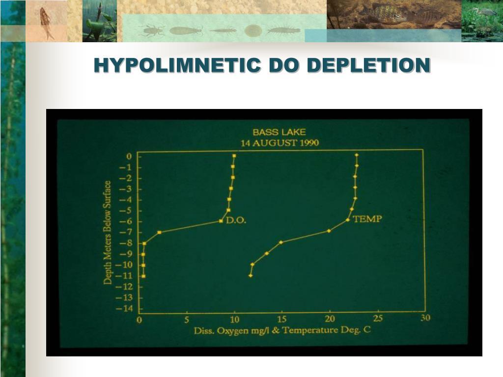 HYPOLIMNETIC DO DEPLETION
