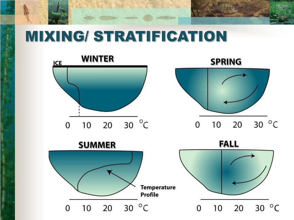 MIXING/ STRATIFICATION