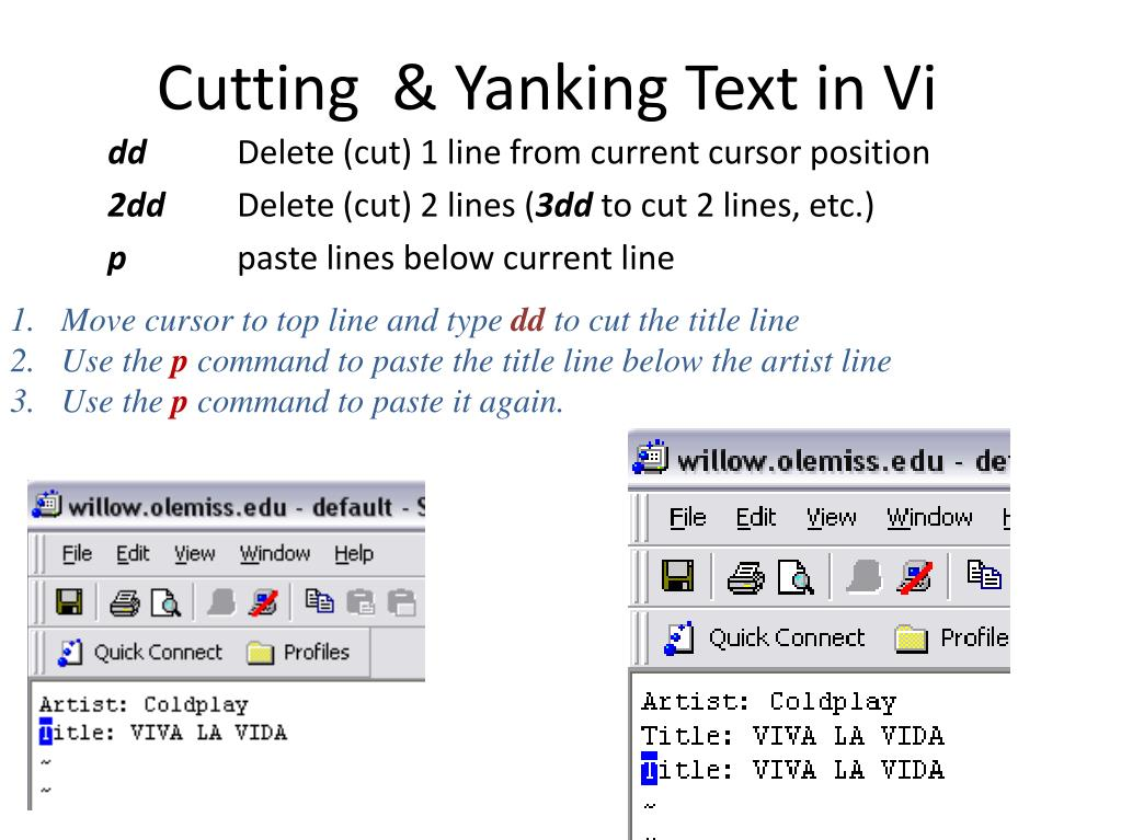 Cutting  & Yanking Text in Vi