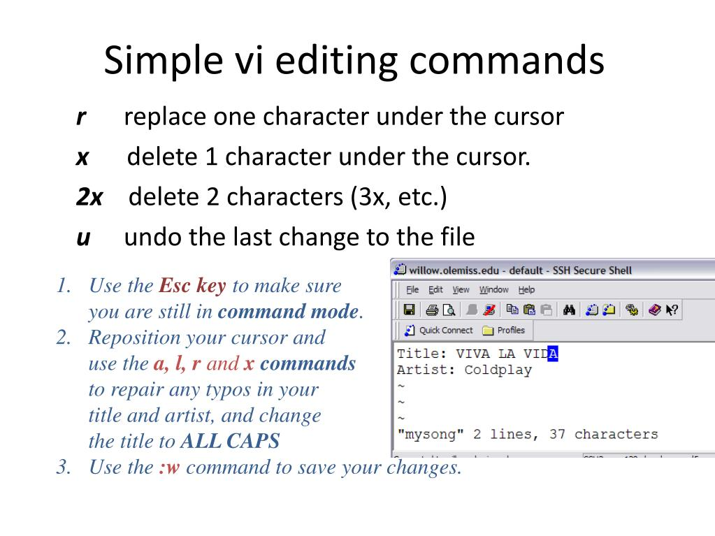 Simple vi editing commands