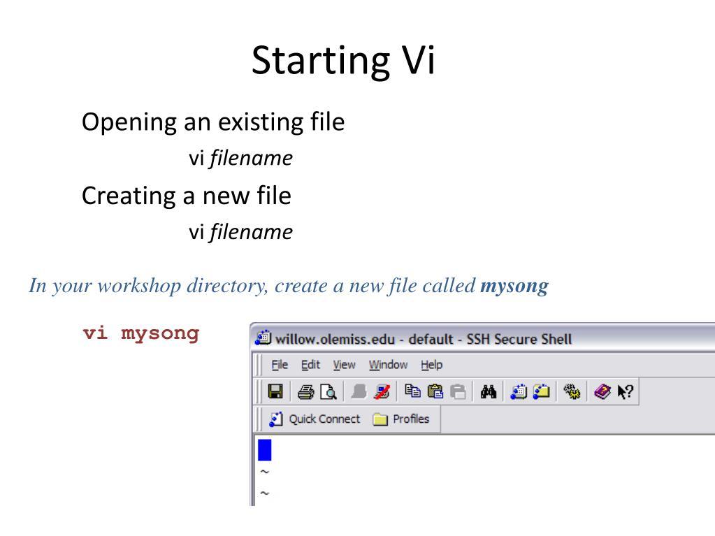 Starting Vi