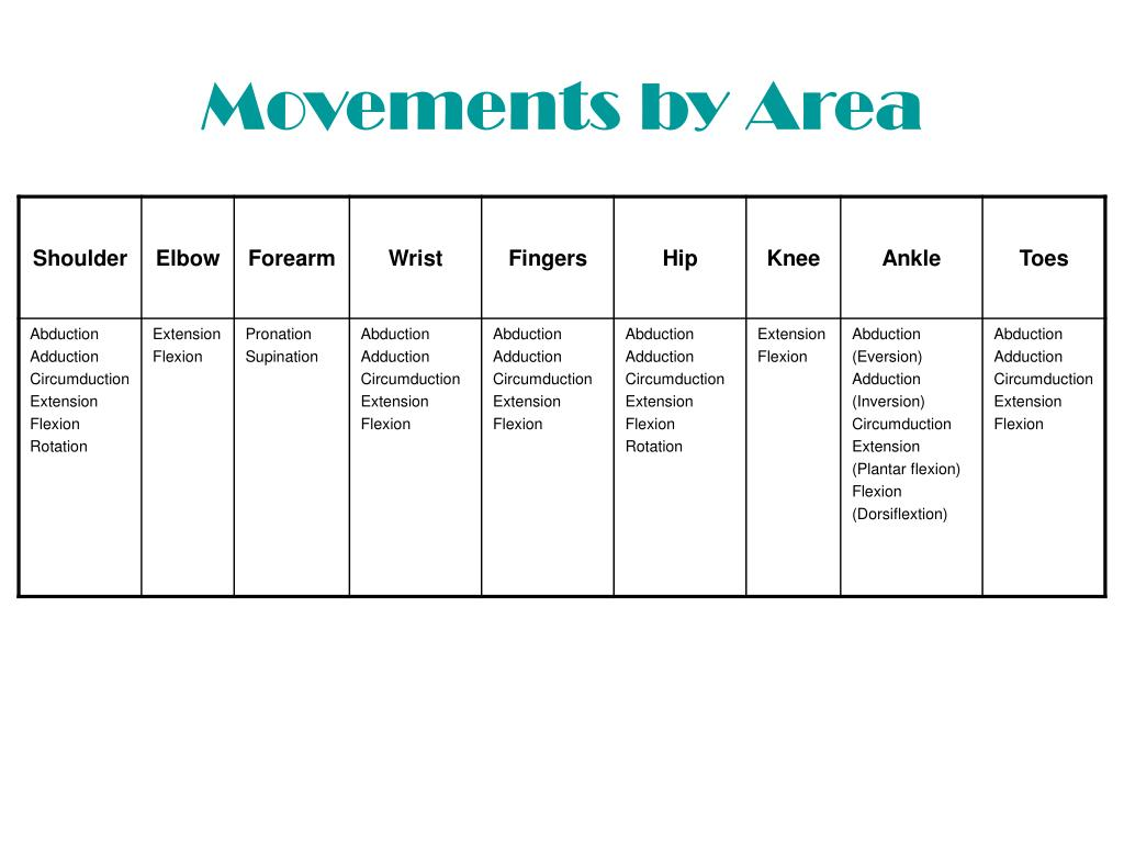 Movements by Area