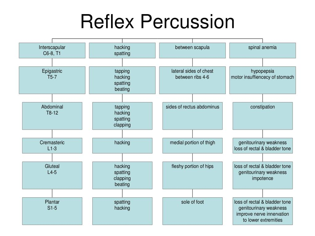 Reflex Percussion