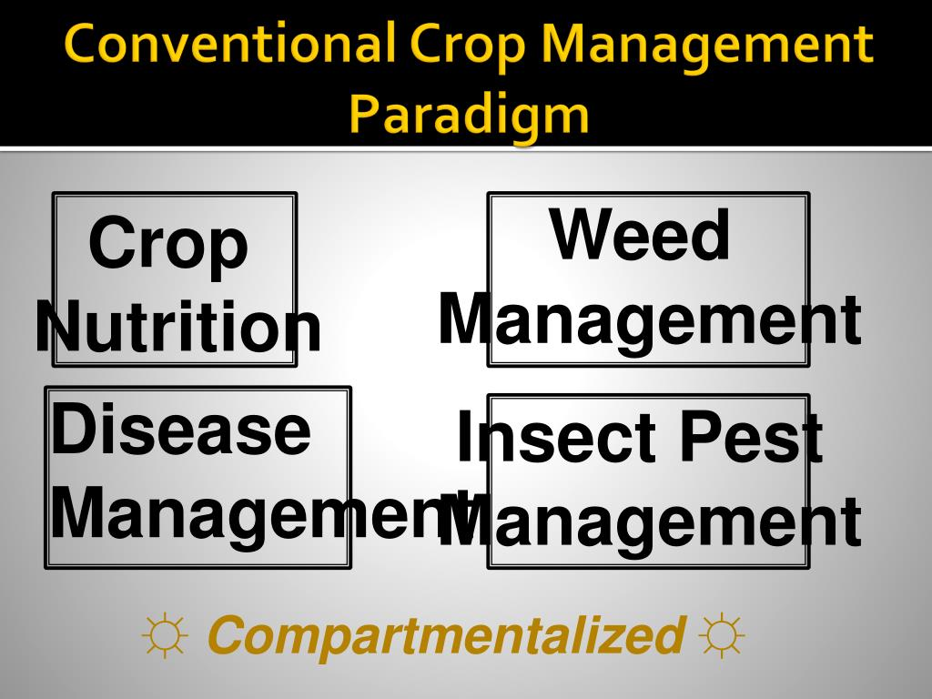 Conventional Crop Management Paradigm