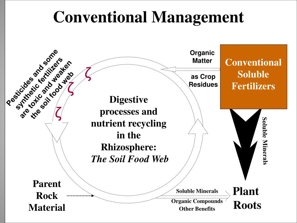 Conventional Management