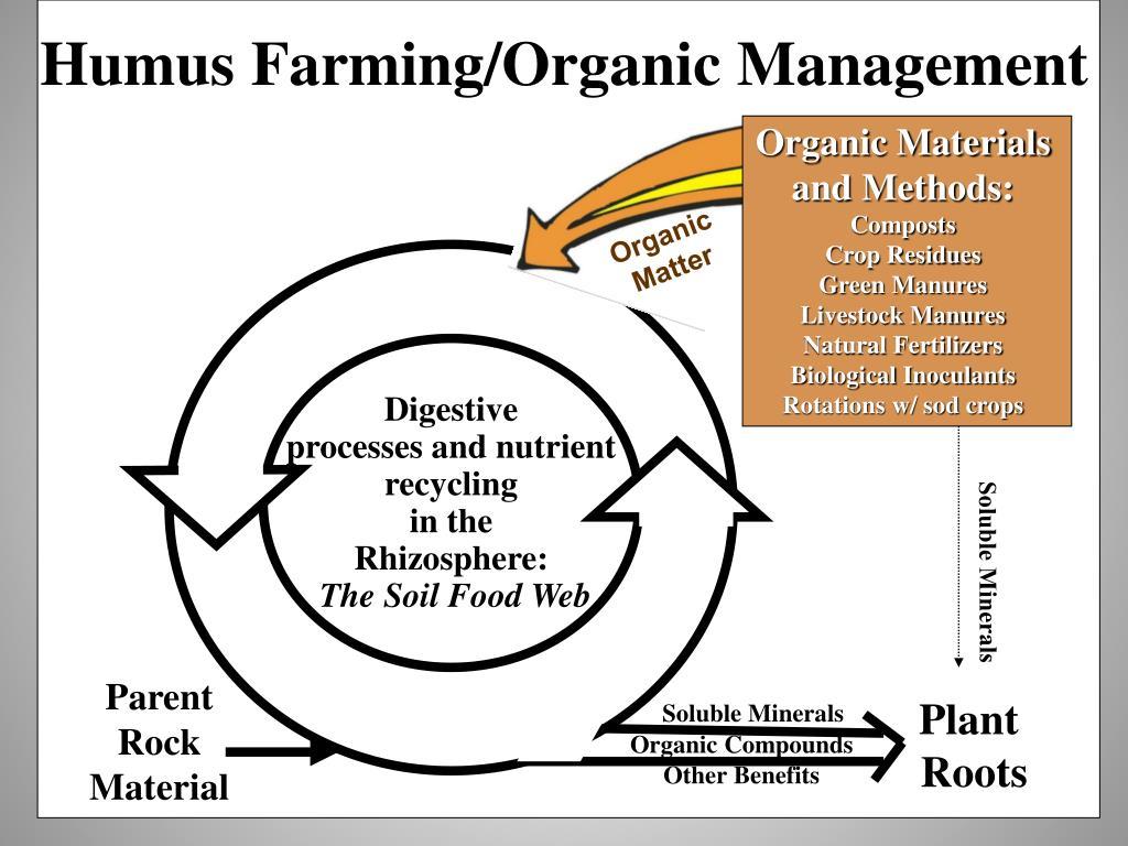 Humus Farming/Organic Management