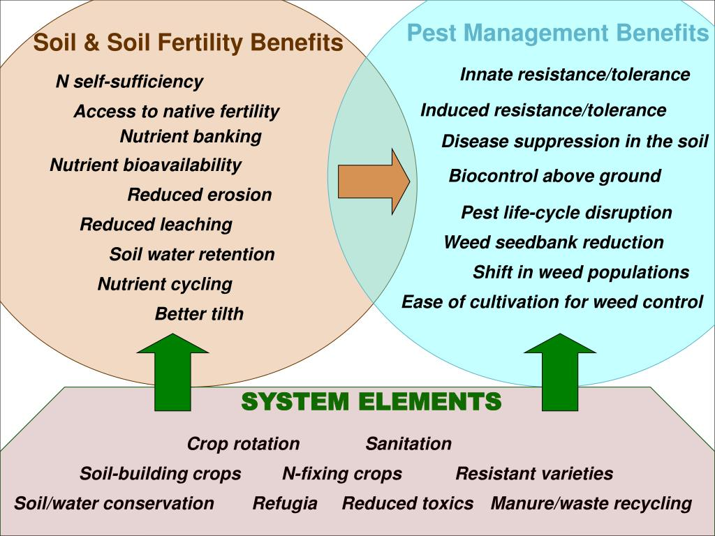 Pest Management Benefits