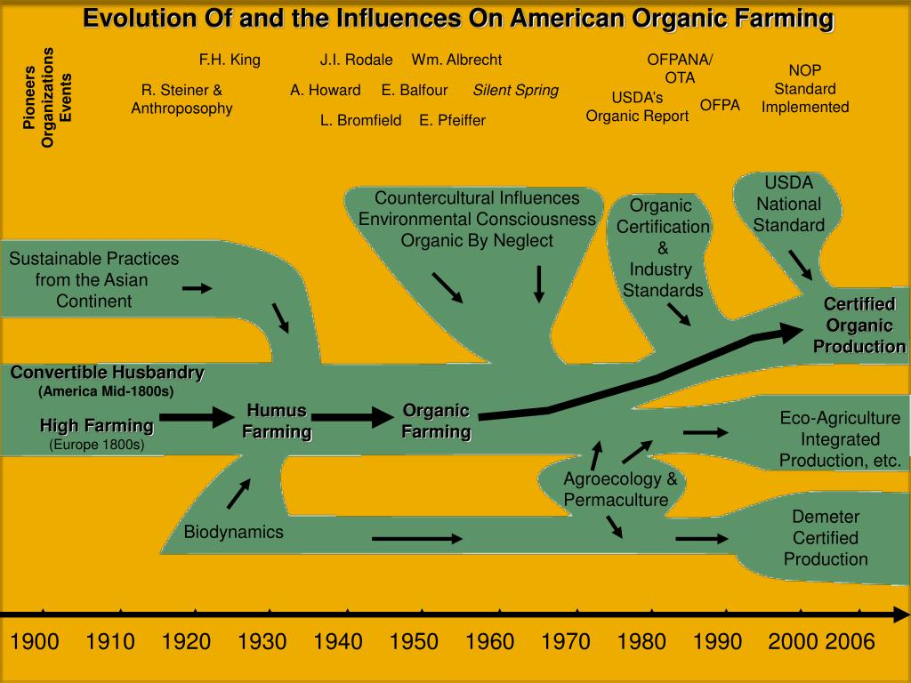 Evolution Of and the Influences On American Organic Farming
