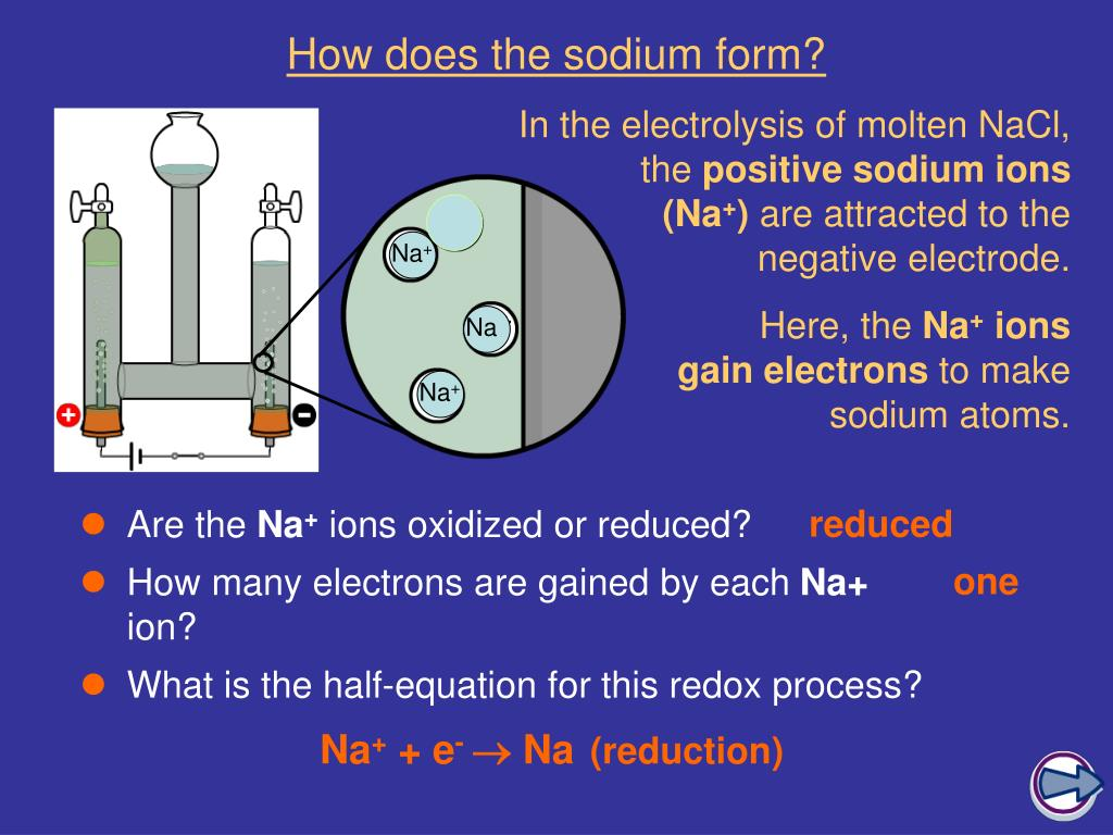 How does the sodium form?