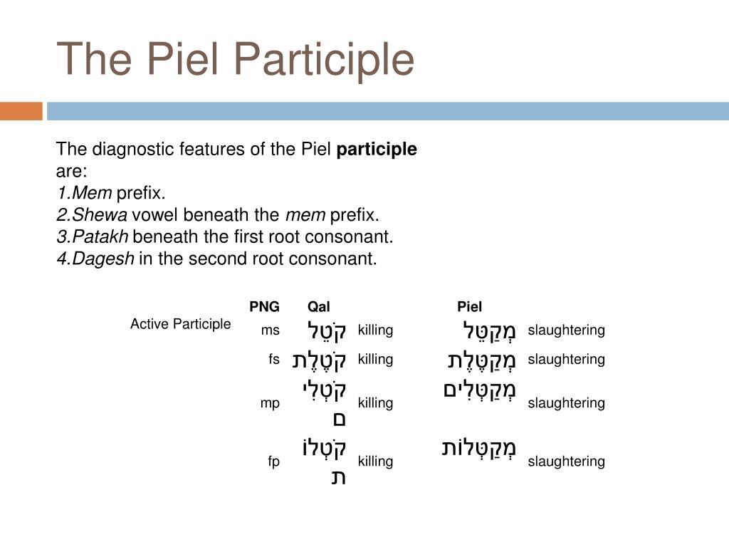 The Piel Participle