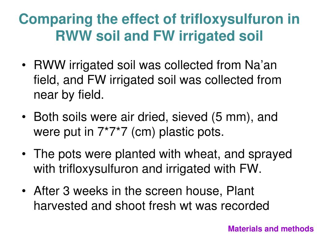 Comparing the effect of trifloxysulfuron in RWW soil and FW irrigated soil